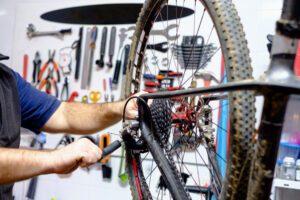Cykle--intext_1